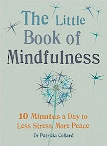 little-book-of mindfulness-book